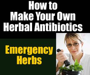 diy antibiotics